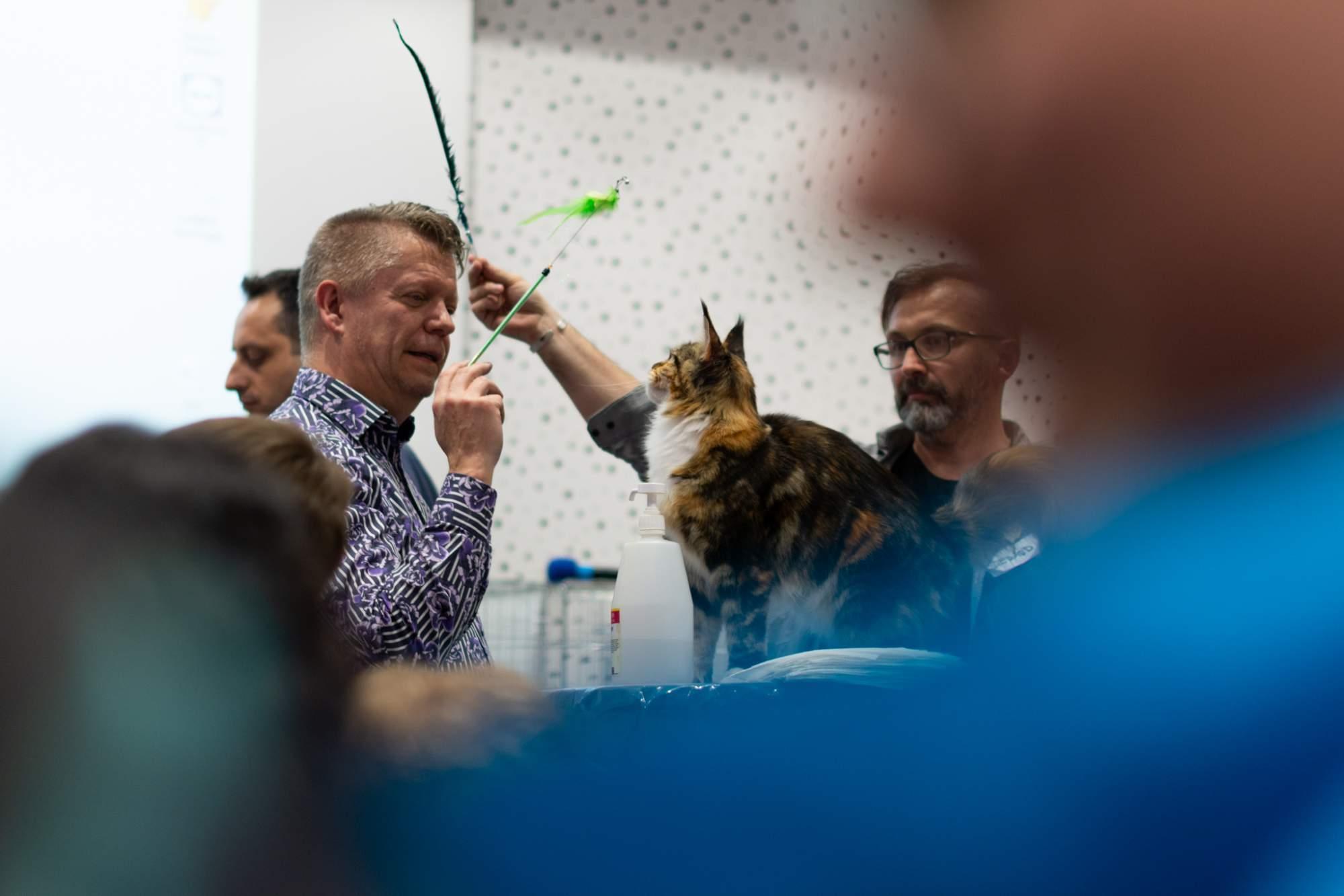 Mezinárodní výstava koček. Foto: Anna Viktorinová