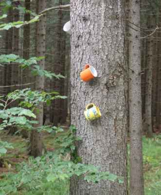 Jéééé, hrníčky na stromě...