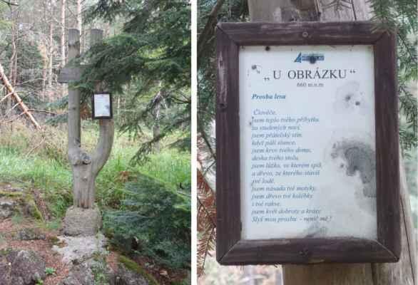 Ne, v lese mezi Havlíčkovou Borovou a Krucemburkem se člověk fakt nenudí :o)))