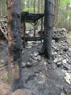 Chudáci stromy, němí svědci lidské neopatrnosti.