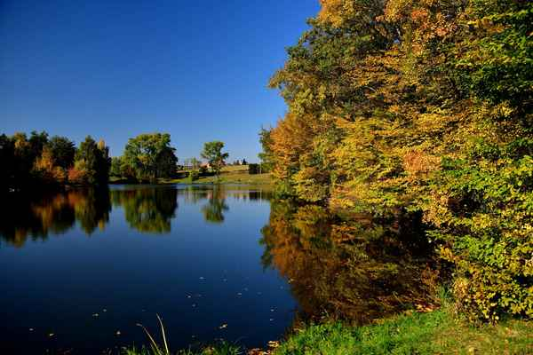 Rybník -Ruprechtov