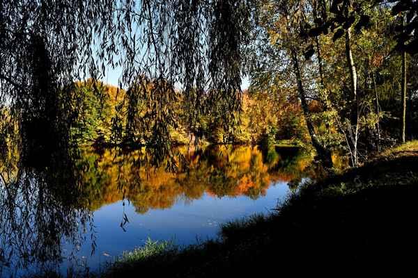 Rybník - Ruprechtov