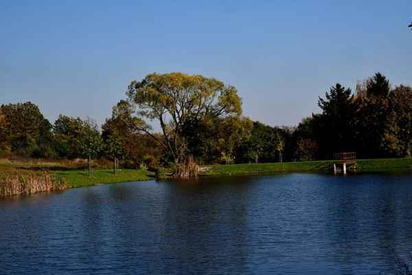 Rybník --Ježkovice