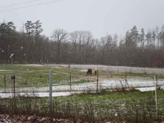 sněžíííí...