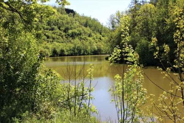 Pohledy na Dolní rybník
