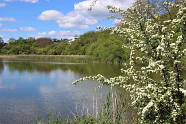 Pohled na Horní rybník