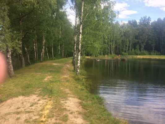 Rybník Pískoviště u Krásna
