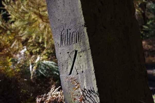 lesní mezník z 19. století...