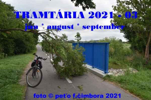 Holíč 09.júl - Úvodné foto albumu a to je z cyklocesty Holíč/Kopčany po veternej mini smršti.