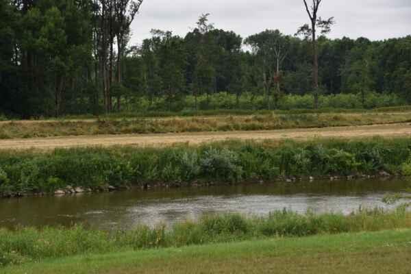 Kopčany 09.júl - Pokračujem po hrázi okolo rieky Morava a kto pozná moje albumy s názvom Tramtária, vie kam idem.