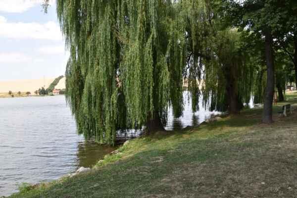 Kunov 22.júl - Je to tu krásne miesto na oddych a pekne v chládku.