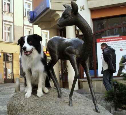 Black and White Story 001 - Jelenia Góra