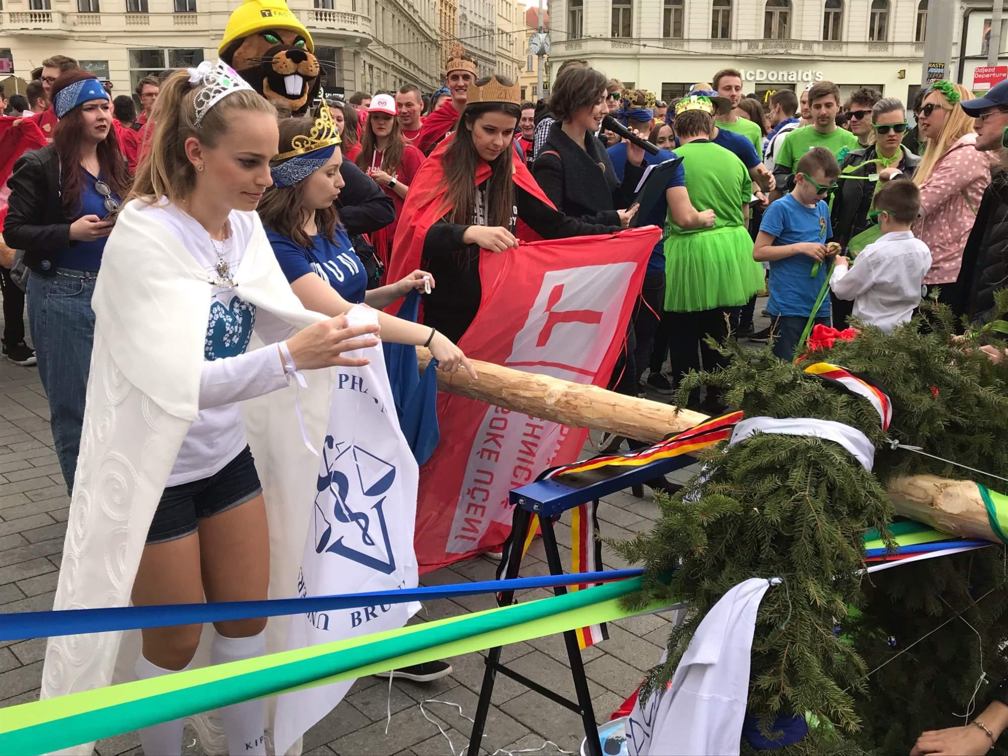Kandidátky na královnu zdobí věnec. Foto: Vendula Kocandová