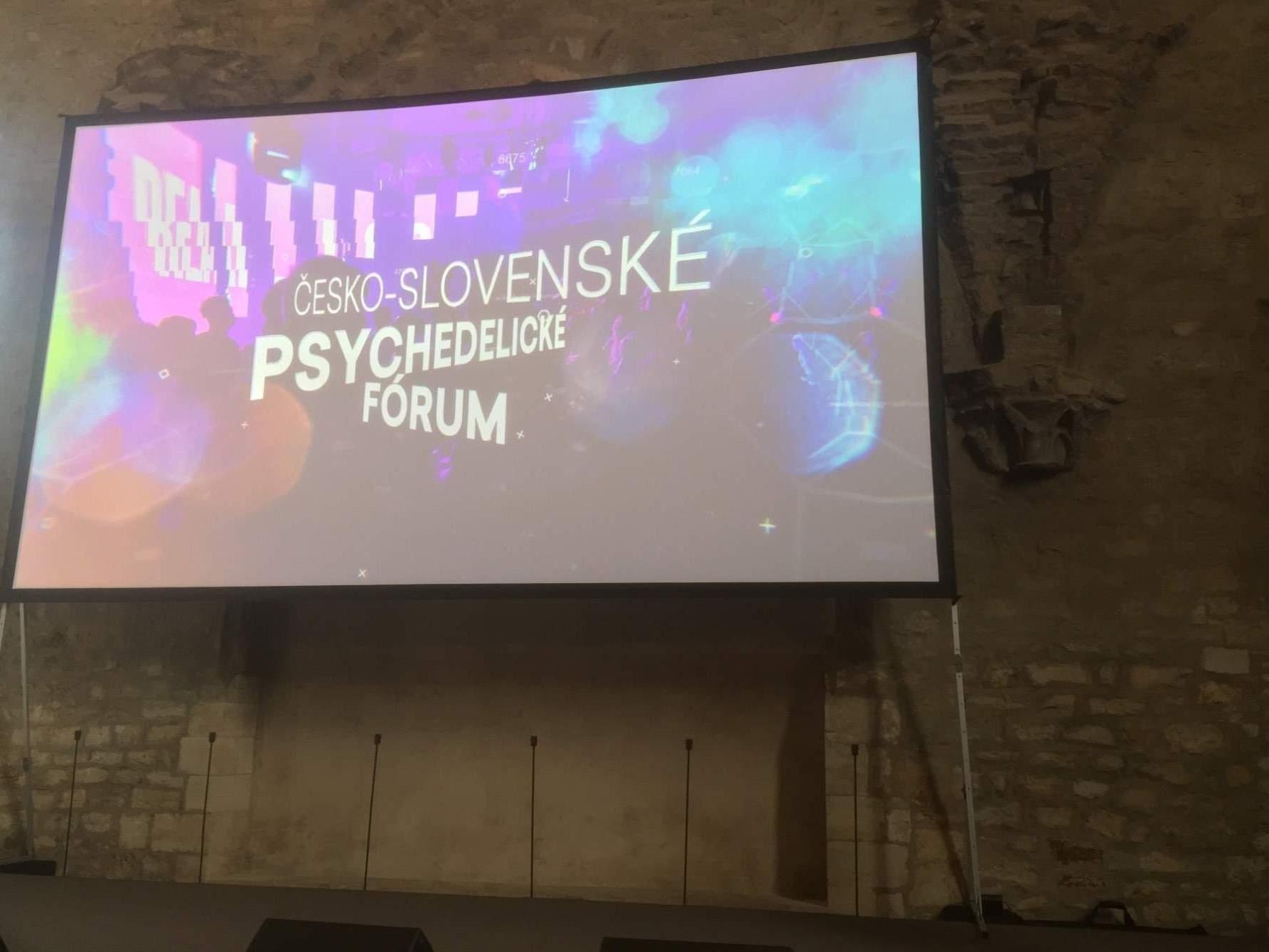 Česko-slovenské psychedelické fórum 2019, Anežský klášter. Foto: Ondřej Fajstavr
