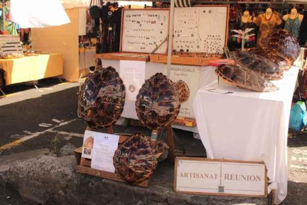 je možno zakoupit i krunýř želvy s certifikací pro dovoz do EU