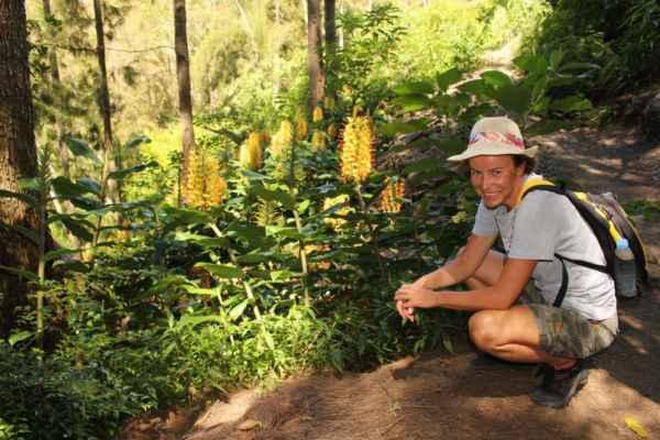 při výšlapu obdivujeme velké květiny - vonící jako lilie