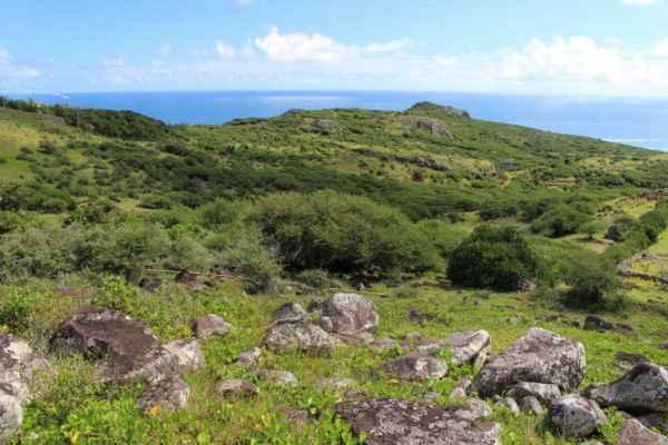 na východní straně je ostrov zelený