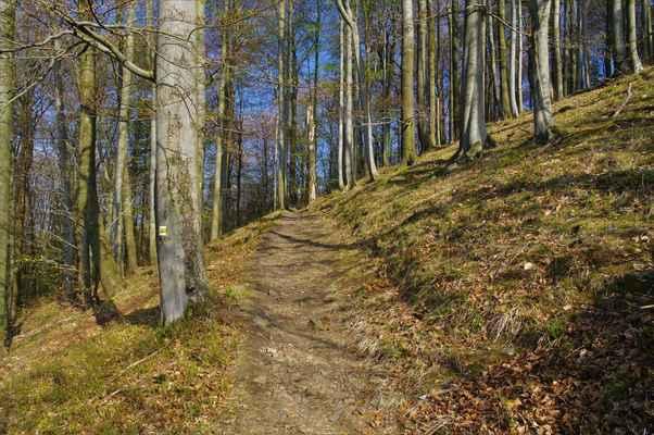 na konci 19. století byl vybudován pohodlný turistický chodník k chatě a rozhledně na vrcholu. chata ani rozhledna již nestojí, ale cesta zůstala...