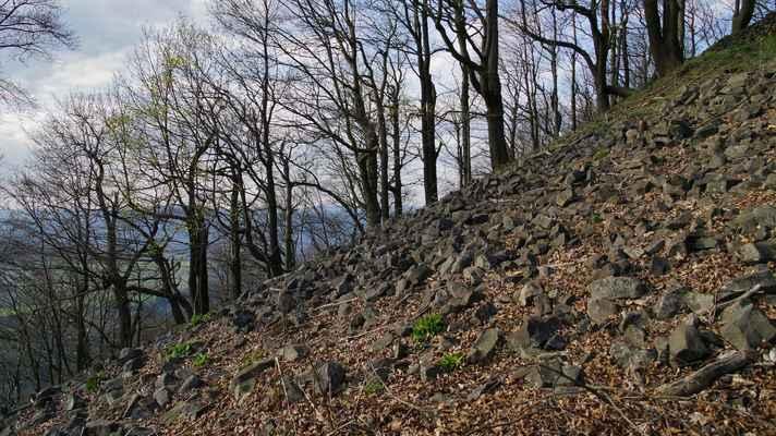 před olistěním stromů je z vrcholového kamenného moře celkem slušný i když omezený výhled...