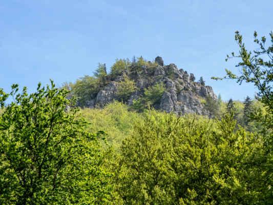 Borová skala