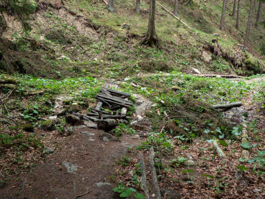Po zostupe sme opäť pri kamenistom koryte potoka. Mostík už ma svoje dobré časy dávno za sebou, našťastie vody je málo a tak nie je problém prejsť z jednej strany potoka na druhú
