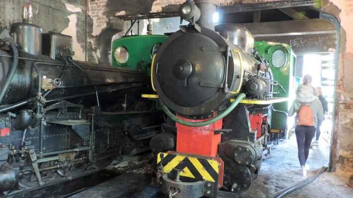Parní lokomotivy, které vozí návštěvníky po úzkorozchodné dráze, ale jen při nějakých příležitostech.