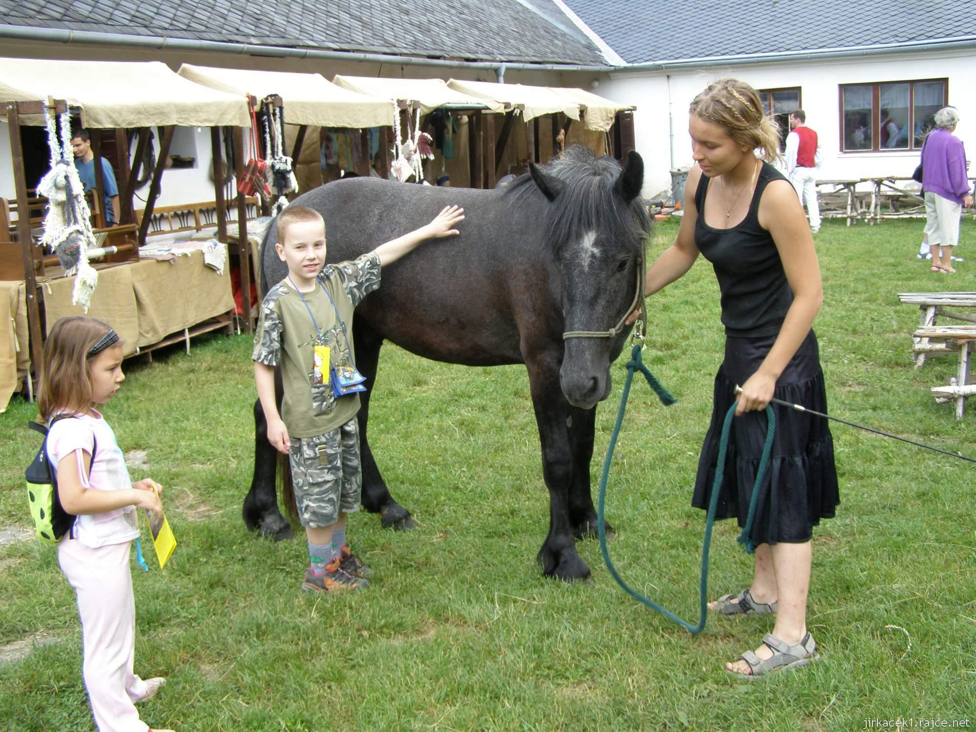 Hanácké skanzen Příkazy - kůň na nádvoří